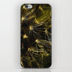 Latte iPhone & iPod Skin