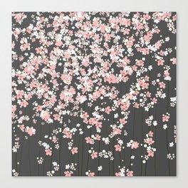 Black background Pink Shidare Zakura Canvas Print