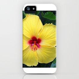 Maʻo hau hele iPhone Case