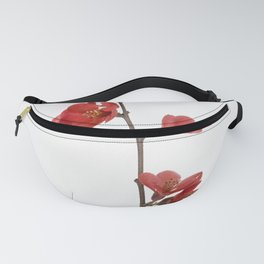 Branch with flowers Fanny Pack