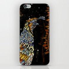 QUAIL KREIOS iPhone & iPod Skin