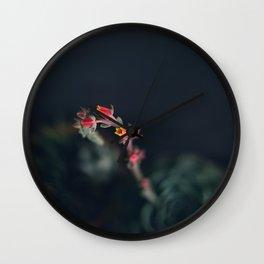 Succulent (3) Wall Clock