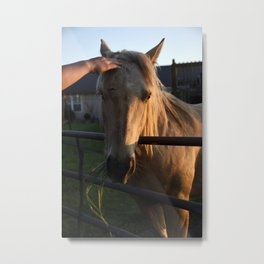 She's a Beauty... Metal Print