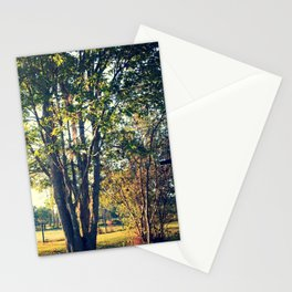 Tree in the Light Stationery Cards