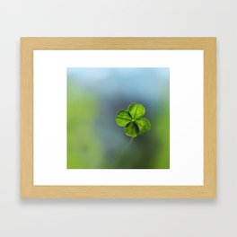 Lucky Four Leaf Clover Framed Art Print
