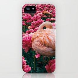 flamingos laugh in flowers iPhone Case