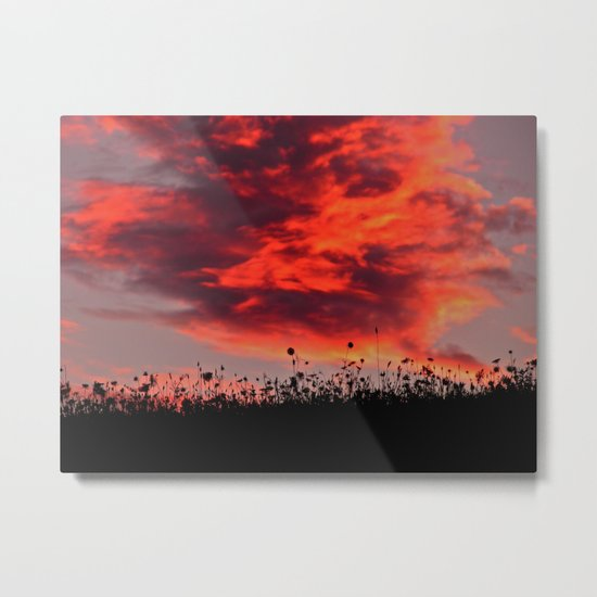 Sun Sets in the Field Metal Print