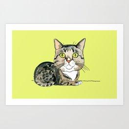 Green-eyed Cat Art Print
