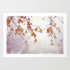 Gracefully  Art Print