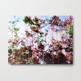 Everglades Noise Metal Print