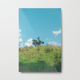 Nature Metal Print