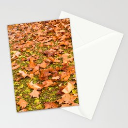 Payson 011 Stationery Cards
