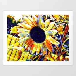 Blushing Sunflower Art Print