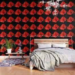 Poppies on Black Wallpaper