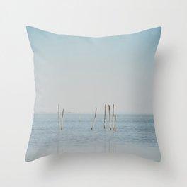 the Étang de Vaccarès ... Throw Pillow