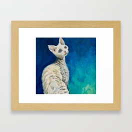 Devon Rex named Heaven Framed Art Print