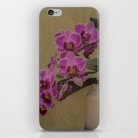 orchid iPhone & iPod Skins featuring Orchid by Steve Purnell