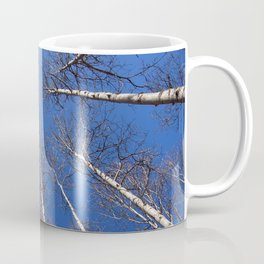 Nature: The trees trunk with  blue sky background. Coffee Mug