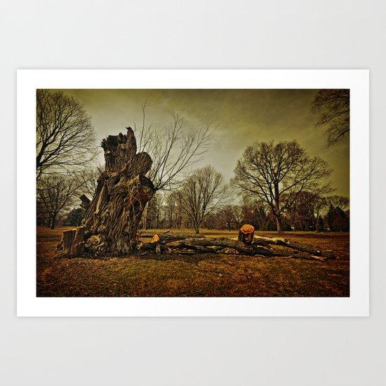 Stump Art Print