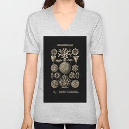 """""""Hexacoralla"""" from """"Art Forms of Nature"""" by Ernst Haeckel Unisex V-Neck"""