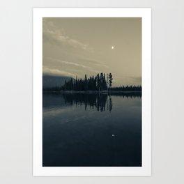 Pine Trees 1 Art Print