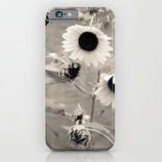 Sunflowers. iPhone 6s Slim Case