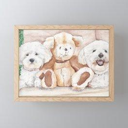 Two Bichons and A Friend Framed Mini Art Print