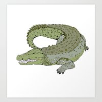 crocodile Art Prints featuring Crocodile by Melrose Illustrations