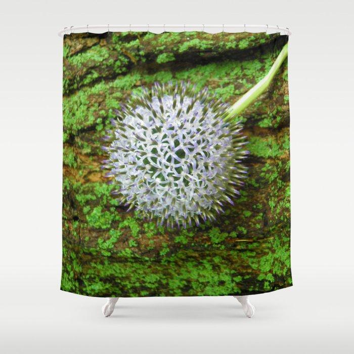Globe Thistle. Shower Curtain by gbartdesign | Society6