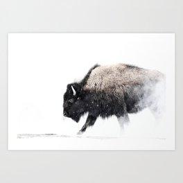 Prancing Buffalo Art Print