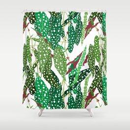 Polka Dot Begonia Leaves in White Shower Curtain