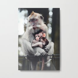 Monkey see, monkey sleep - travel photography Metal Print