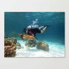 underwater diver scuba swim turtle tortoise animal Canvas Print
