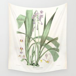 Spathoglottis Pauline - From nature by RD Fitzgerald FLS - Facsimile Wall Tapestry