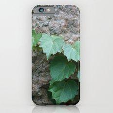 Granite Ivy iPhone 6s Slim Case