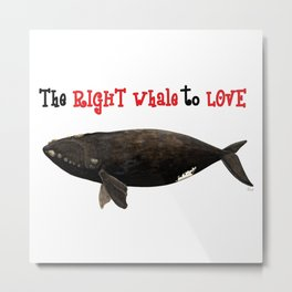 The right whale to love Metal Print