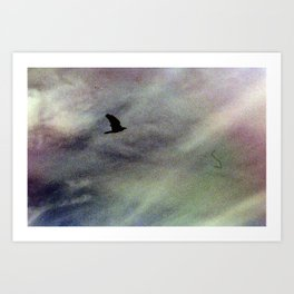 Black Bird in the Grainy Sky, Joshua Tree, 35mm Film Art Print