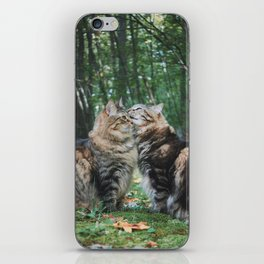 Mainecoon Twins iPhone Skin