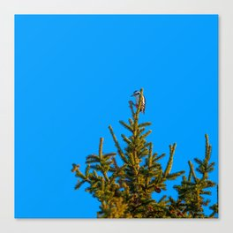 Christmas tree topper Canvas Print