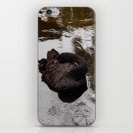 Black Swan iPhone Skin