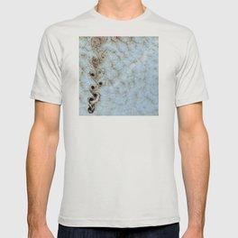 Karman Vortices above Alexander Selkirk Island T-shirt
