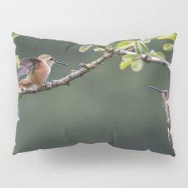 Rufous Hummingbird at Large, No. 2 Pillow Sham