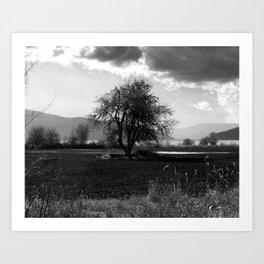 Oden's Tree Art Print