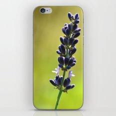 Alone! iPhone & iPod Skin