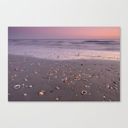 The Beach Of The Shells. Purple sunset Canvas Print