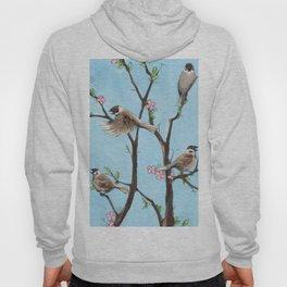 Sparrows Hoody