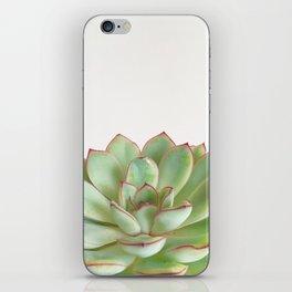 Green Succulent iPhone Skin
