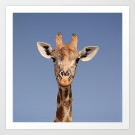 Giraffe Portrait Art Print