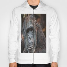 What you lookin at. Hoody