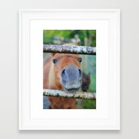 pony Framed Art Prints featuring Pony by Blown A Wish Photography
